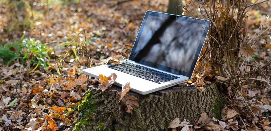 Laptop on a tree stump