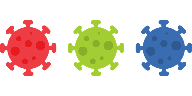 Three cartoon images of the SARS-CoV2 virus - red, green and blue